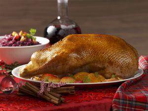 Roast Goose with Apple and Orange Stuffing recipe