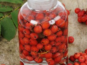 Rowan Berry Infused Liqueur recipe