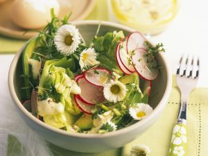 Salad with Radishes, Avocado and Daisies recipe