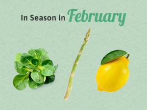 Seasonal Calendar - February