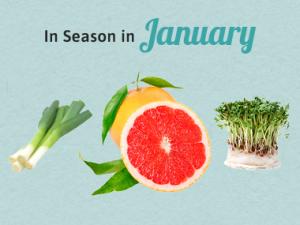 Seasonal Calendar - January