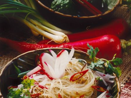 Cellophane Noodle and Chinese Fungi Salad with Ground Beef