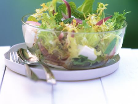 Salad with Onion and Mozzarella