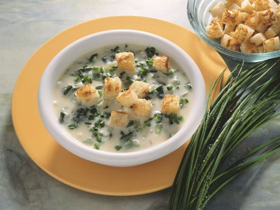 Creamy Soup with Herbs and Croutons