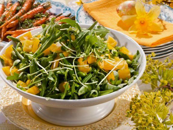 Bean and Arugula Salad Bowl