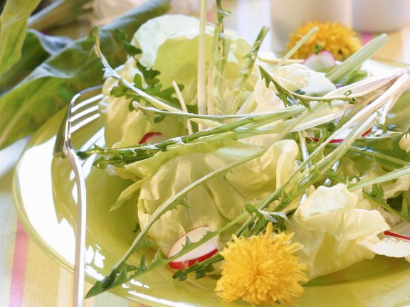 Green Salad with Dandelions and Radishes