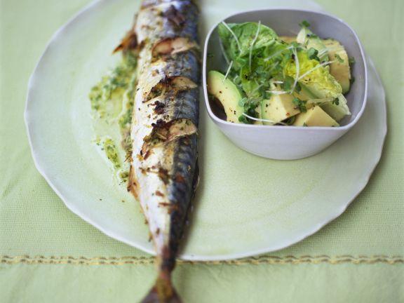 Grilled Mackerel with Avocado Salad