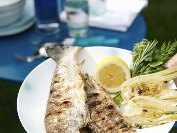 Grilled Trout and Fennel