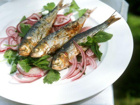 Italian Sardine Salad