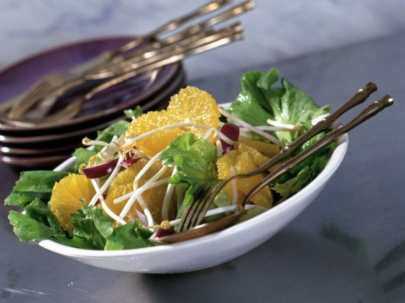 Orange and Endive Salad with Sprouts
