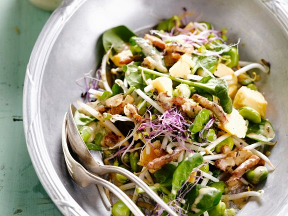 Salad with Fava Beans, Sprouts and Chicken