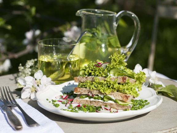 Sandwich Stacks with Quark Spread, Radishes and Chives