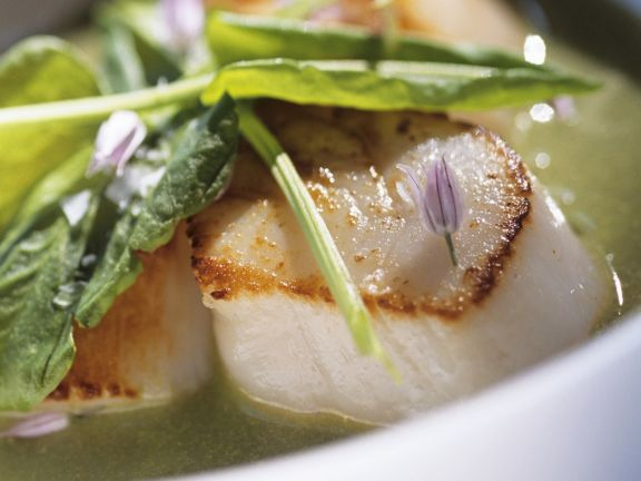 Seared Scallops with Herb Soup