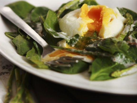Simple Green Leaf Salad