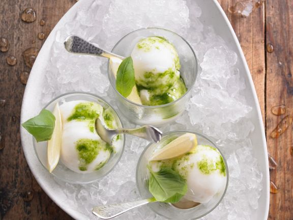 Sorbet with Pesto and Basil