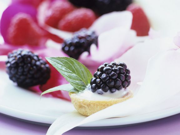 Tartlets with Creamy Vanilla Pudding and Blackberries