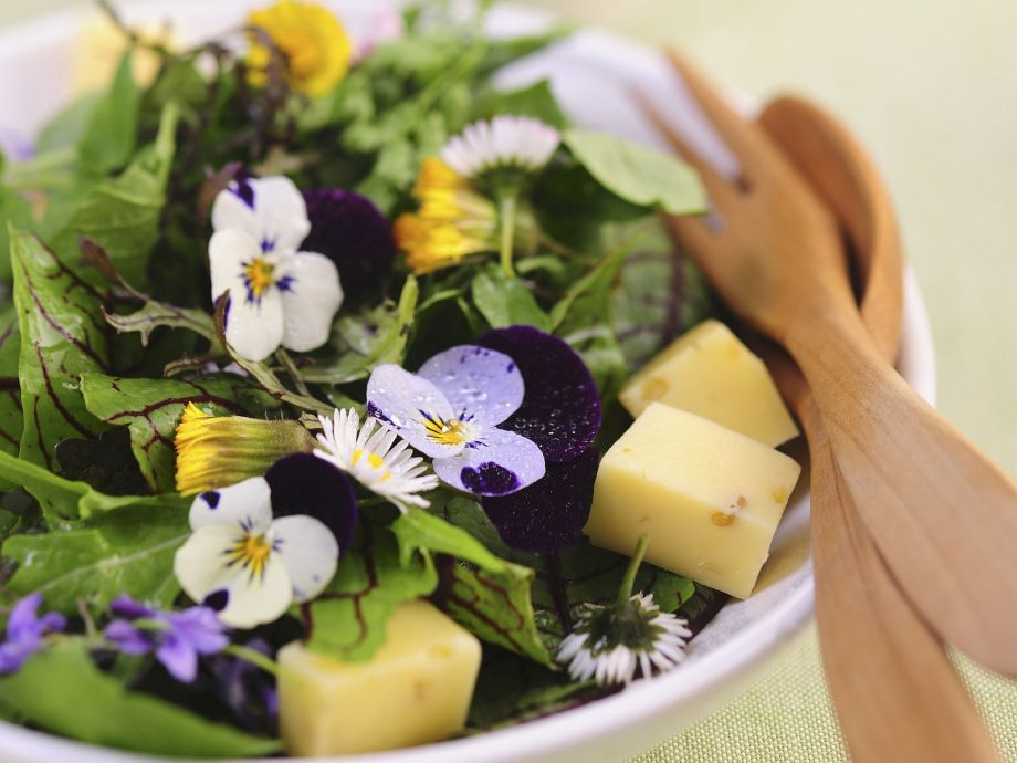 Spring-style Salad with Cubed Cheese