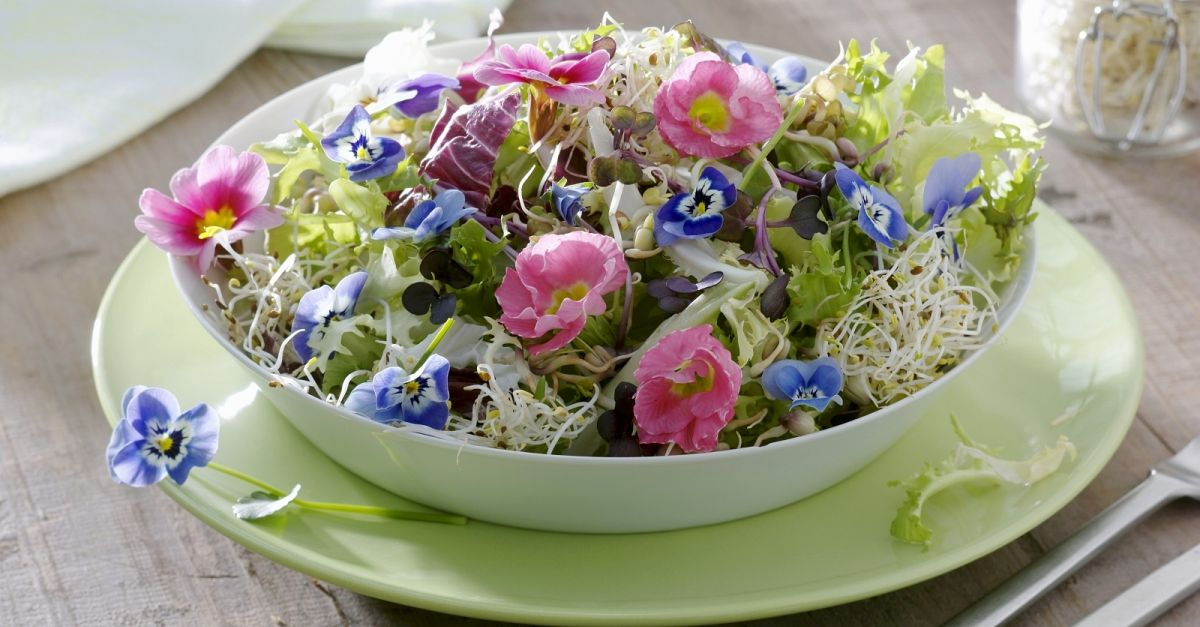 Green Salad with Sprouts and Edible Flowers recipe | Eat Smarter USA