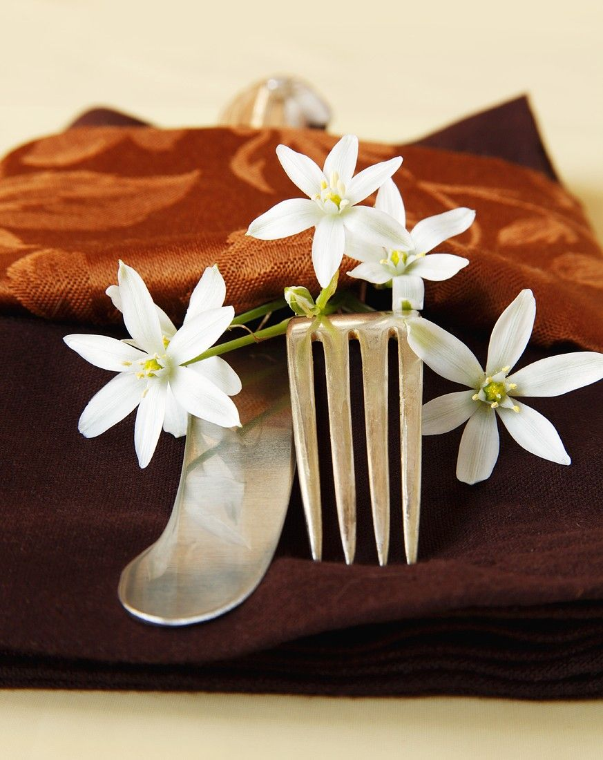 Autumnal Place Setting With Brown Napkin And White Flowers Recipe