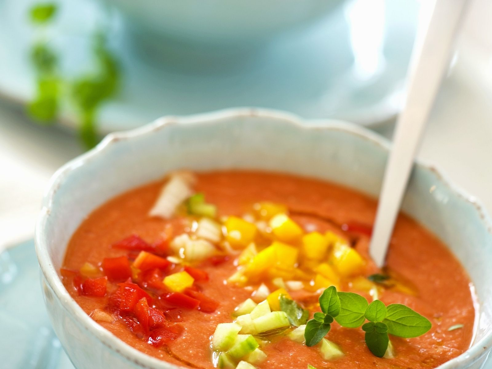 Cold Spanish Soup Gazpacho Recipe Eat Smarter Usa