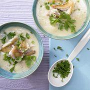 Low Carb Soups Recipes