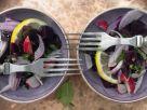 Lebanese Beet Salad recipe
