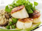 Pan-fried Scallops with Pea PUree recipe