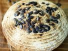 Pumpkin Seed Bread recipe