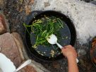 Sauteéd Broccoli Rabe and Hazelnuts recipe